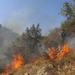 مهار کامل آتشسوزی جنگلهای ارسبارانپس از چهار روز