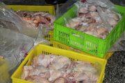 قیمت مرغ ۲۰ هزار و ۴۰۰ تومان است/ برخورد با گرانفروشان مرغ