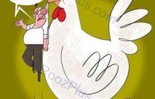نمک بر زخم مردم: کمبود مرغ و کرامات شیخ ما!