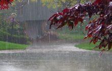 کاهش 24 درصدی بارش های آذربایجان شرقی/ بارش ۲۰۳میلیمتر در سال آبی جاری