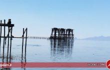 کاهش ۸ سانتی متری تراز دریاچه ارومیه نسبت به سال گذشته